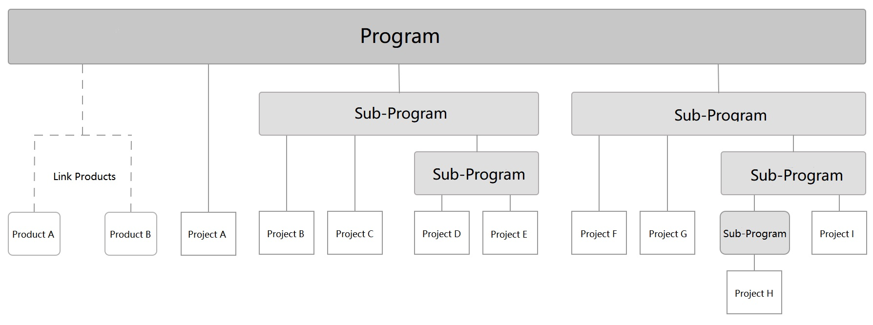 program and project concept